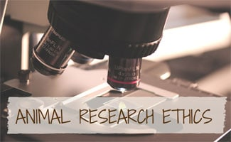 Microscope in lab: Animal Research Ethics