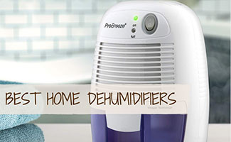Dehumidifier in Living Space (Caption: Best Home Dehumidifiers)