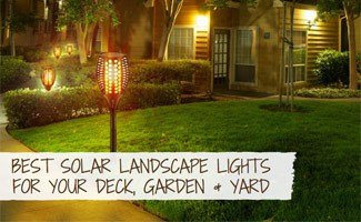 Solar lights in yard at night
