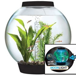 The biOrb Aquarium Kit