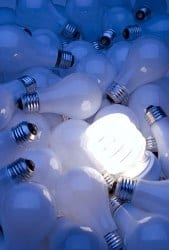 CFL bulb in pile of light bulbs