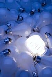 CFL bulb in pile of light bulbs