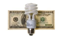 Lightbulb with hundred dollar bill
