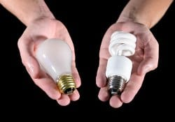 Person holding CFL and Incandescent bulbs