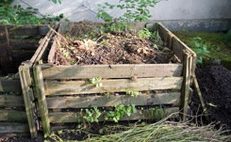 Composting bin at home