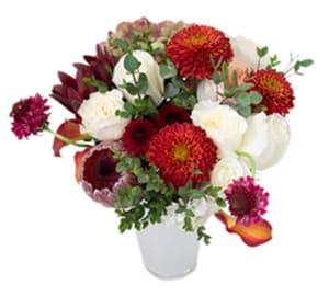 Enjoy Flowers flowers