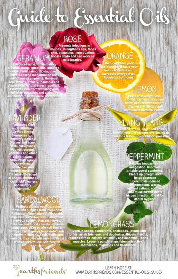 Essential Oils Guide: What Does Each Oil Do?