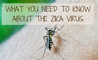 Mosquito on skin: Zika Virus